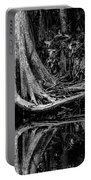 Cypress Roots - Bw Portable Battery Charger