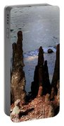 Cypress Roots Portable Battery Charger
