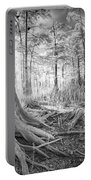 Cypress Roots In Big Cypress Portable Battery Charger