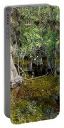 Cypress Trees 4021 Portable Battery Charger