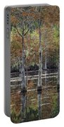 Cypress Tree Fall Reflections Portable Battery Charger