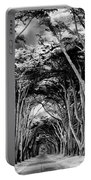 Cypress Tree Tunnel Point Reyes Portable Battery Charger