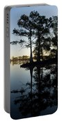 Cypress Trees In Atchafalaya Basin Portable Battery Charger