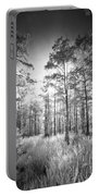 Cypress Trees In Big Cypress Portable Battery Charger