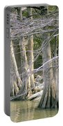 Cypress Trees Portable Battery Charger