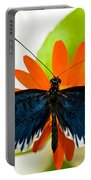 Cythera Butterfly Portable Battery Charger