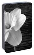 Daffodil Narcissus Flower Black And White Portable Battery Charger