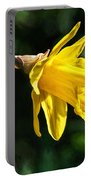 Daffodil - Impressions Portable Battery Charger