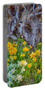 Daffodils And Sculpture Portable Battery Charger