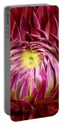 Dahlia-0006 Portable Battery Charger