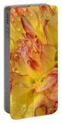 Dahlia - 812 Portable Battery Charger