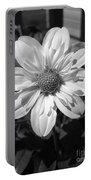 Dahlia Named Alpen Cherub Portable Battery Charger