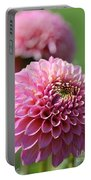 Dahlia Named Skipley Spot Of Gold Portable Battery Charger