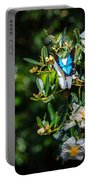 Daintree Monarch Butterfly Portable Battery Charger