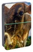 Dairy Cow Portable Battery Charger