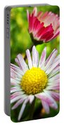Daisies In Januray Portable Battery Charger