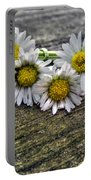 Daisies In Wreath Portable Battery Charger