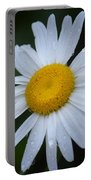 Daisy 14-3 Portable Battery Charger