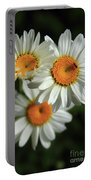 Daisy And Friend Portable Battery Charger