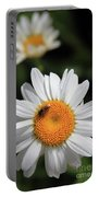 Daisy Bee Nice Portable Battery Charger