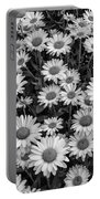 Daisy Cluster Vermont Flowers In Black And White Portable Battery Charger