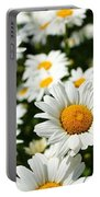 Daisy Day Portable Battery Charger