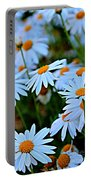 Daisy Fireworks Portable Battery Charger