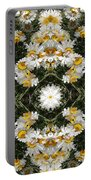 Daisy Kaleido 1 Portable Battery Charger