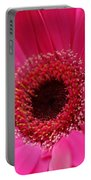 Daisy Pink Portable Battery Charger