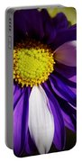 Daisy Power Portable Battery Charger