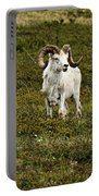 Dall Rams On Alert Portable Battery Charger