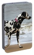Dalmatian By The Sea Portable Battery Charger