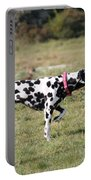 Dalmation Pretending To Be A Pointer Portable Battery Charger