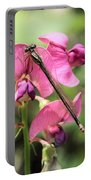 Damselfly On Sweet Pea Portable Battery Charger