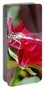 Damselfly  Portable Battery Charger