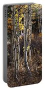 Dancing Aspens Portable Battery Charger