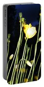Dancing In The Dark Portable Battery Charger