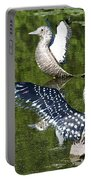 Dancing Loons Portable Battery Charger