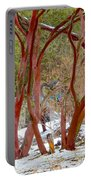 Dancing Manzanitas On The Hillside In Park Sierra-california Portable Battery Charger