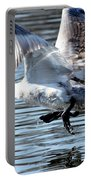 Dancing Swan Portable Battery Charger