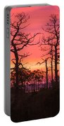 Dancing Trees Into The Fire Portable Battery Charger