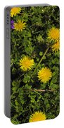 Dandelion Convention Portable Battery Charger