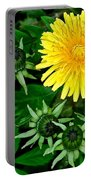 Dandelion Farm Portable Battery Charger by Frozen in Time Fine Art Photography