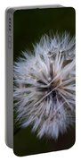 Dandelion In Green Portable Battery Charger