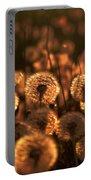 Dandelion Sparkles Portable Battery Charger