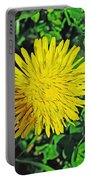 Dandy Lion Portable Battery Charger