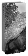 Dante In Black And White Portable Battery Charger