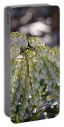 Dappled Pieris Japonica Portable Battery Charger