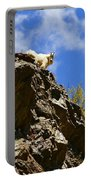 Dare To Climb Portable Battery Charger