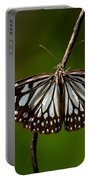 Dark Glassy Tiger Butterfly On Branch Portable Battery Charger